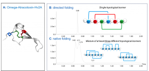 Disulfide-rich Peptides